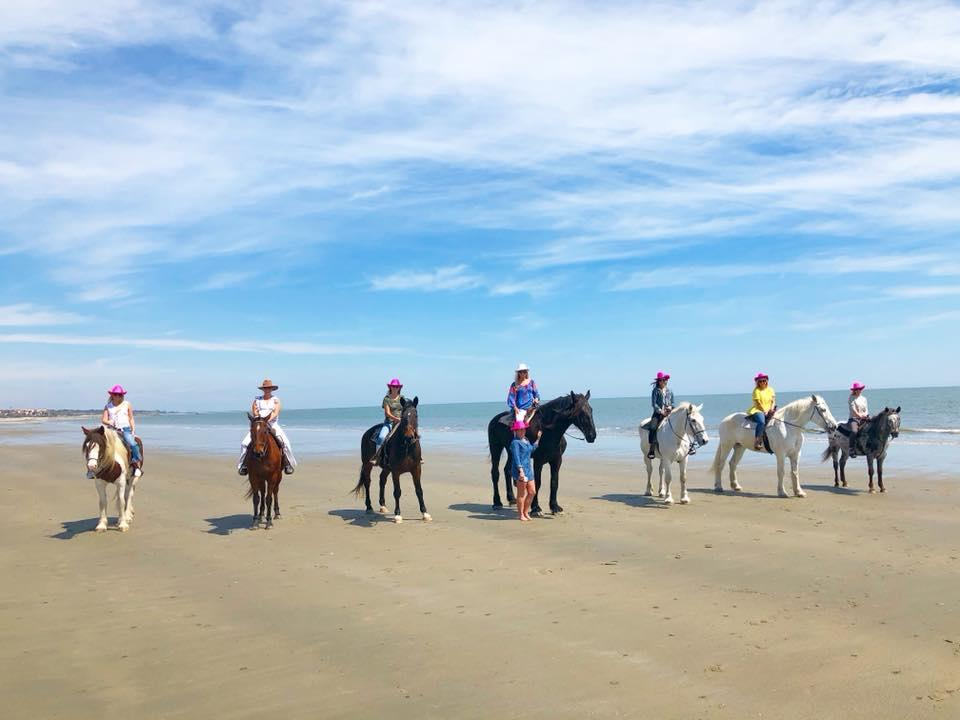 Unique Bachelorette Party Ideas - San Diego Horseback Riding