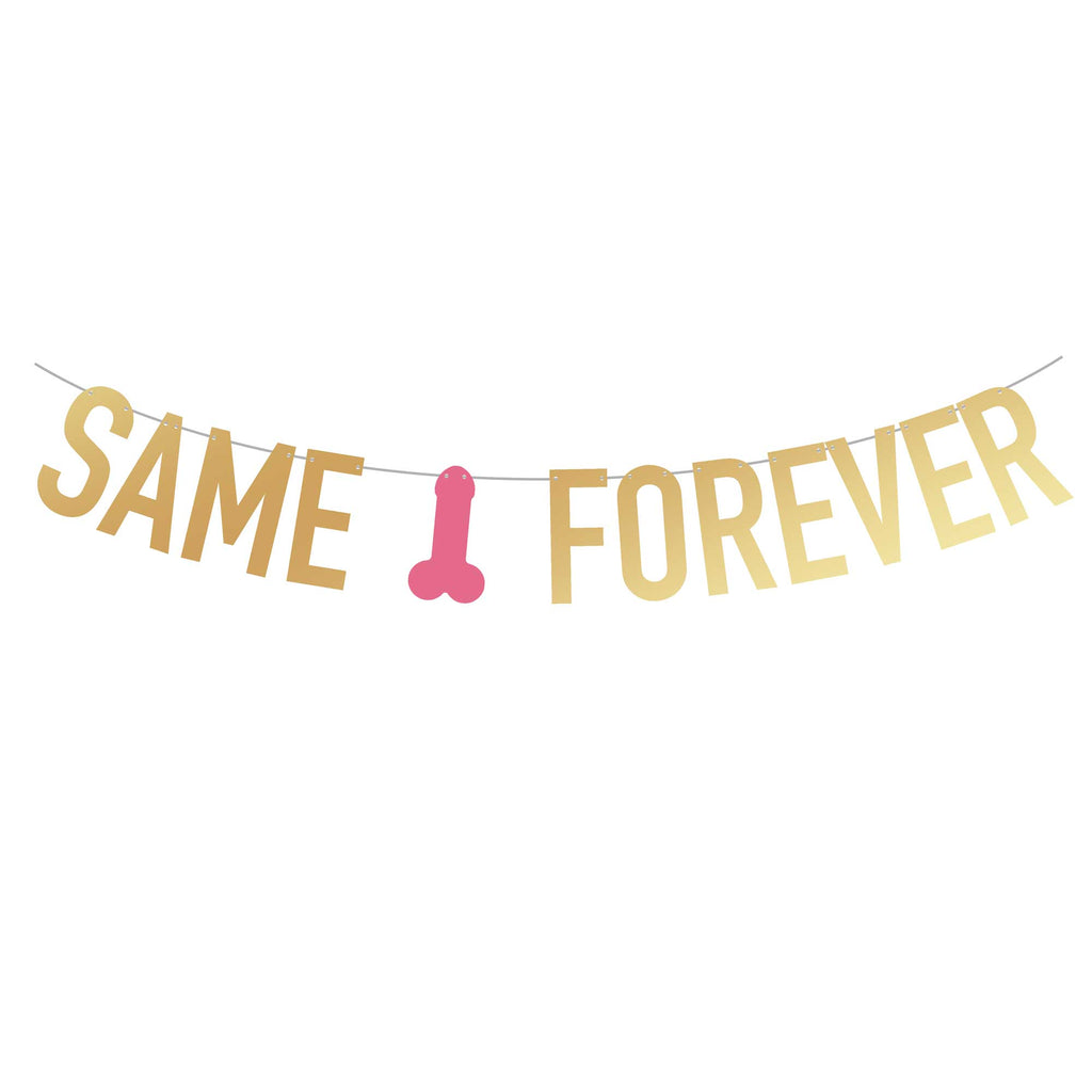 Bachelorette Party Banner | Same Penis Forever | Stag & Hen