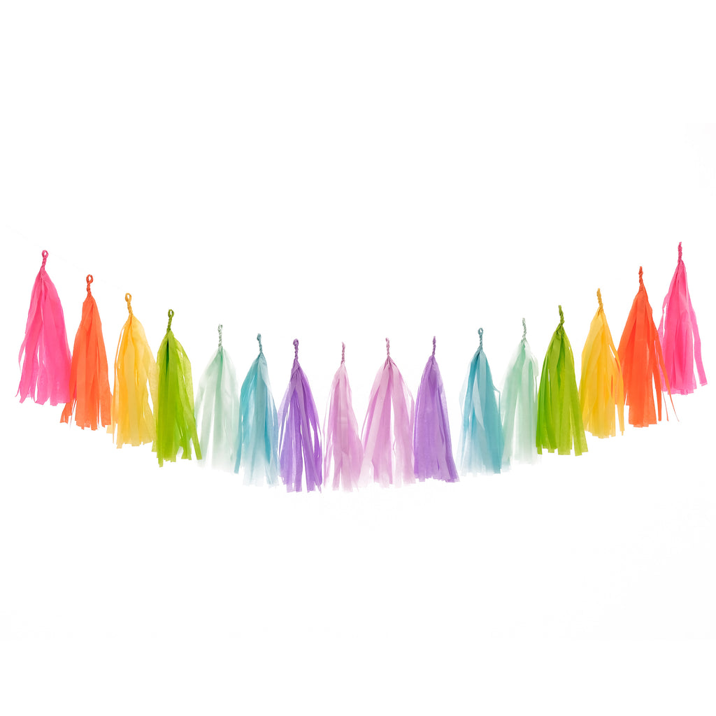 Rainbow Bright Tassel Garland