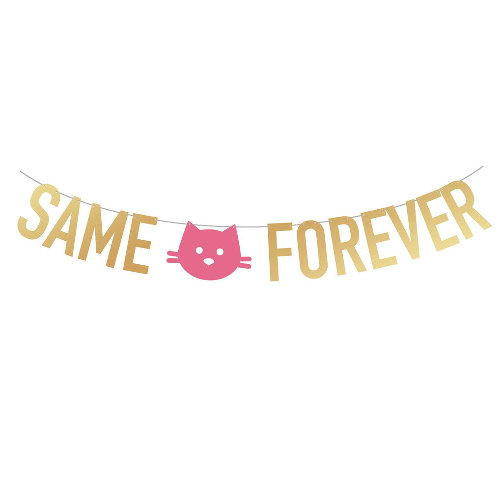 Lesbian Bachelorette Party Supplies | Same Kitty Forever Party Banner