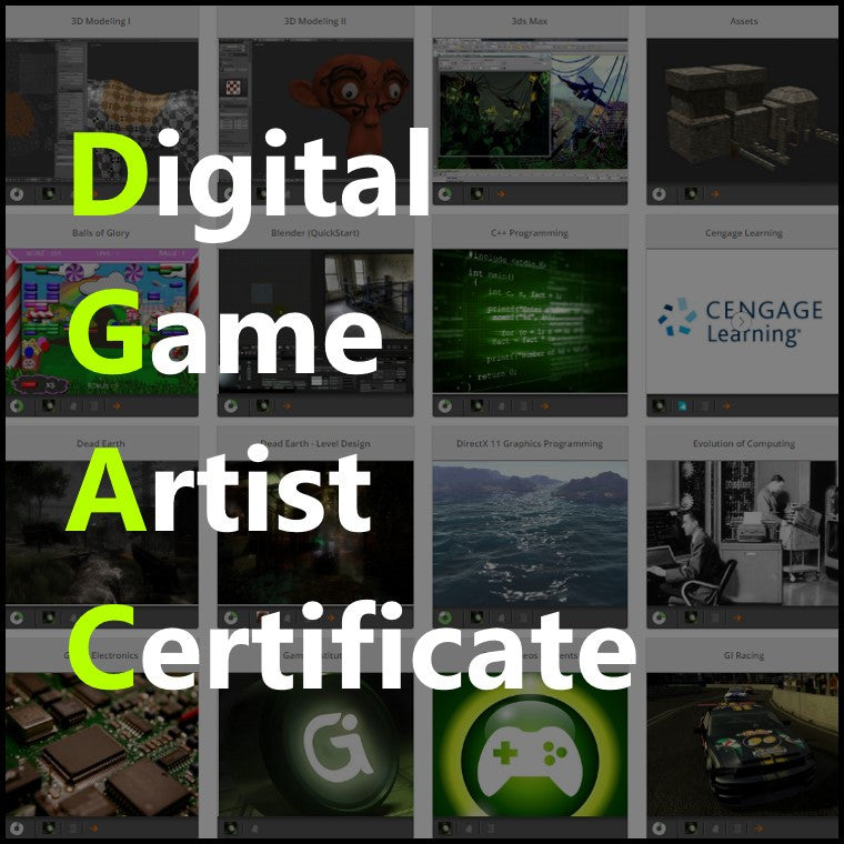 Digital Game Artist Certificate (Year)