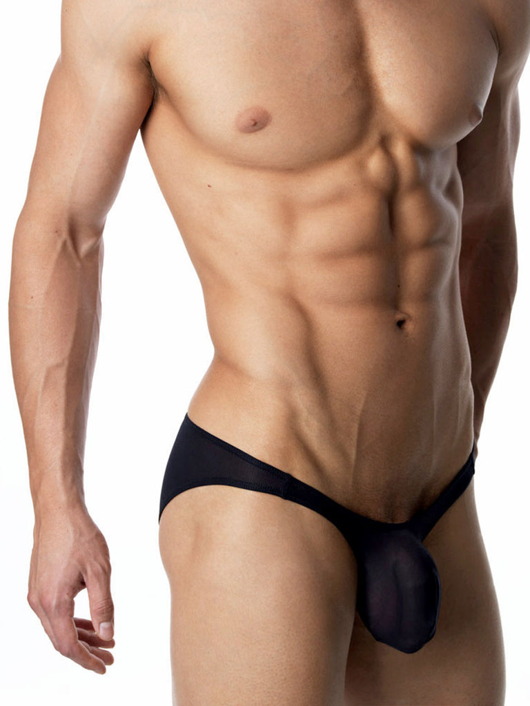 Well-Endowed Brief Black