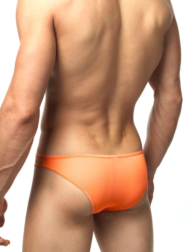 Teardrop Mesh Brief