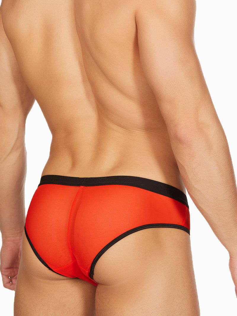 Men's red See Through Mesh Briefs
