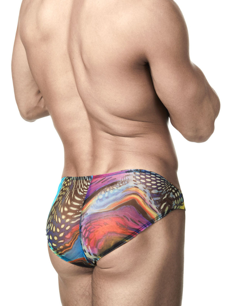 The Peacock Mesh Swim Brief