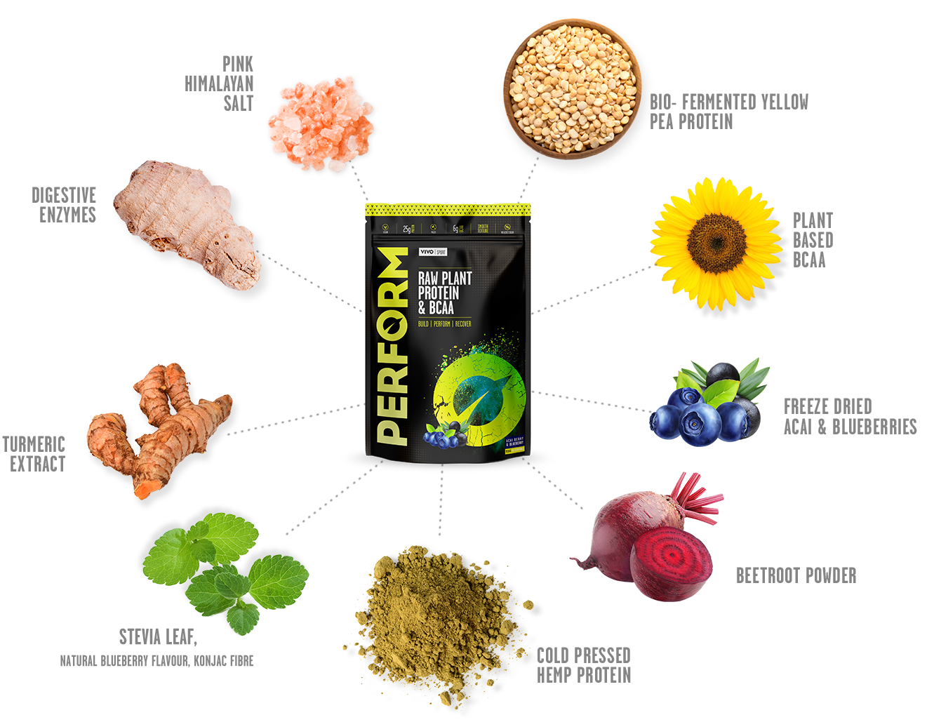 Perform Raw Plant Protein Vivo Life
