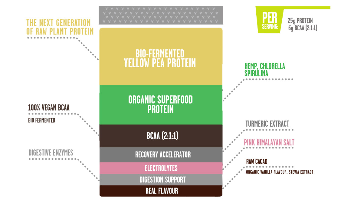 PERFORM:raw plant protein raw cacao, Whats inside