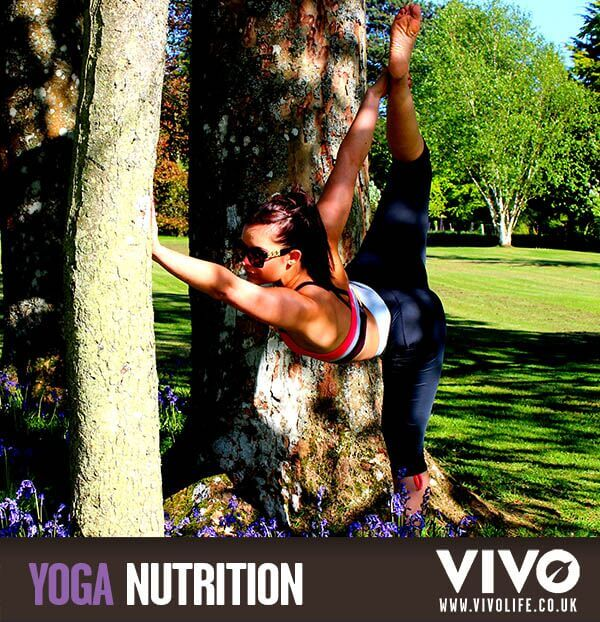 Yoga Nutrition Vivo Life