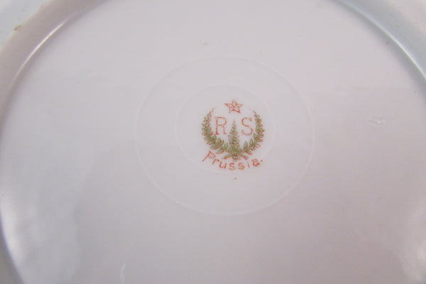 Vintage Porcelain Plate RS Prussia Floral Plate Scalloped Edge
