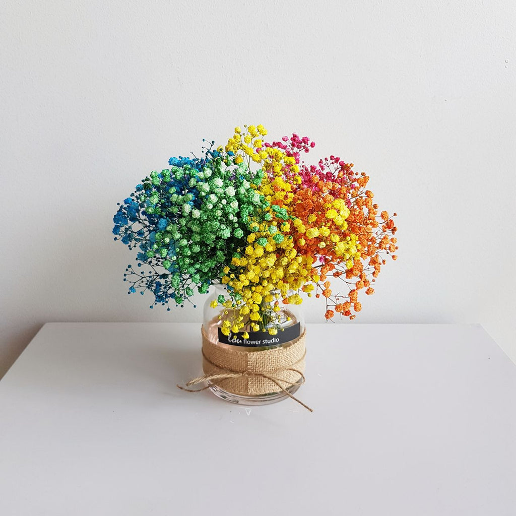 Rainbow Babybreath in a Jar