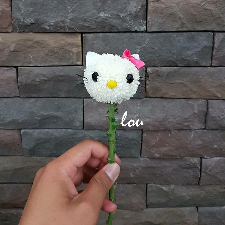 Hello Kitty Bouquet - Lou Flower Studio