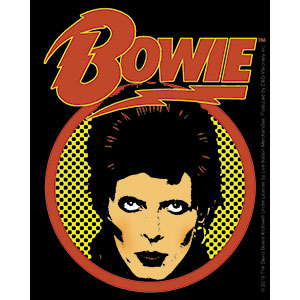 DAVID BOWIE (CLOSE UP LOGO) STICKER
