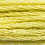 Embroidery Floss - 165