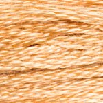 Embroidery Floss - 437