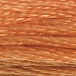 Embroidery Floss - 721
