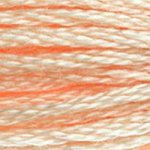 Embroidery Floss - 951