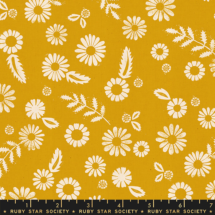 Golden Hour Daisy by Ruby Star Society in Goldenrod