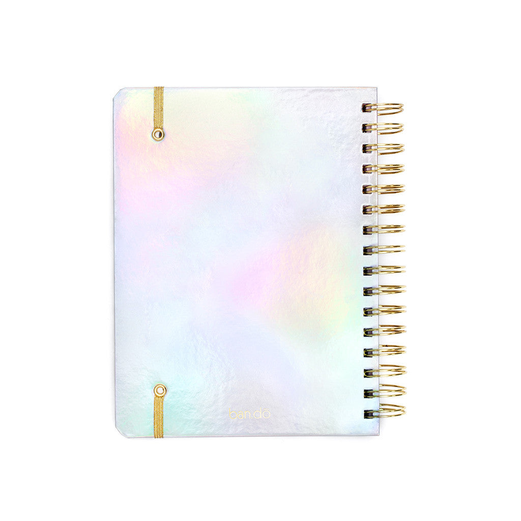 ban.do 17 month medium agenda - holographic