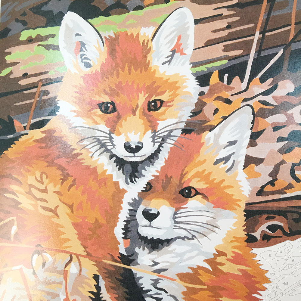 Fox Hole Paint By Number