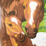 Pony & Mother Paint By Number