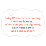 Baby shower champagne bottle tags - Gray/Coral - Dazzling Daisies