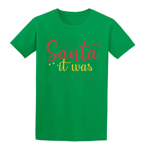 Dear Santa It Was Just A Phase Christmas T-Shirt-Gildan-Daataadirect.co.uk