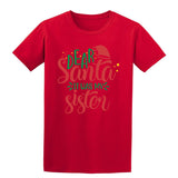 Dear Santa It Was My Sister Christmas T-Shirt-Gildan-Daataadirect.co.uk