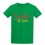 Dear Santa It Was The Cat Christmas T-Shirt-Gildan-Daataadirect.co.uk