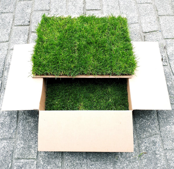 REFILL GRASS  (Vancouver Home Delivery)