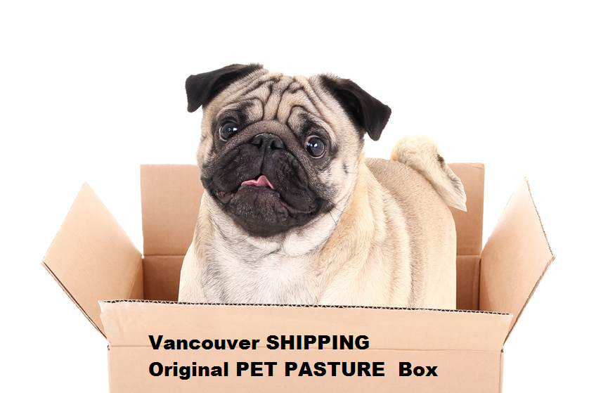 Vancouver Area COURIER SHIPPING