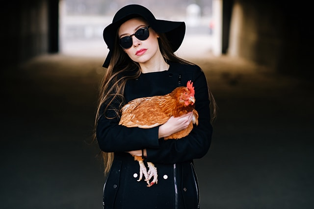 9 Unique Gifts for Chicken Lovers