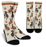 pitbull socks