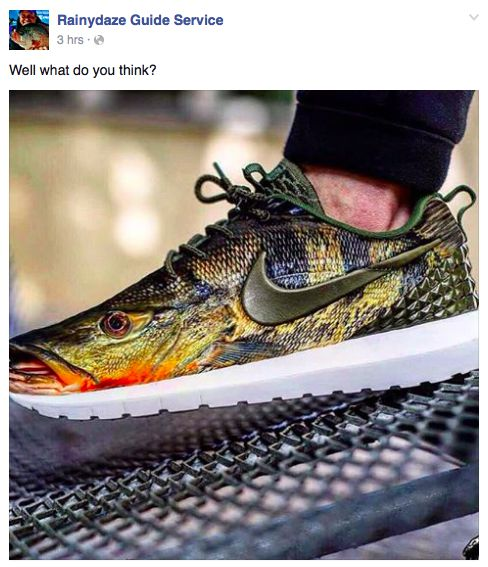 Realistic Nike Fish Shoes