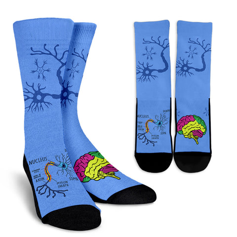 Neuroscience Socks