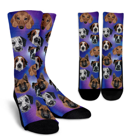 Cosmic Dog Socks