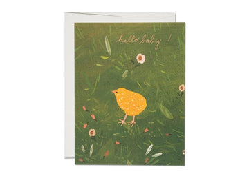 Red Cap Cards | Hello Baby Chick