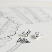 Load image into Gallery viewer, Barnacle Cluster Stud Earrings