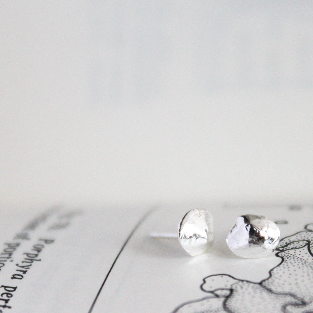 Clam Shell Stud Earrings