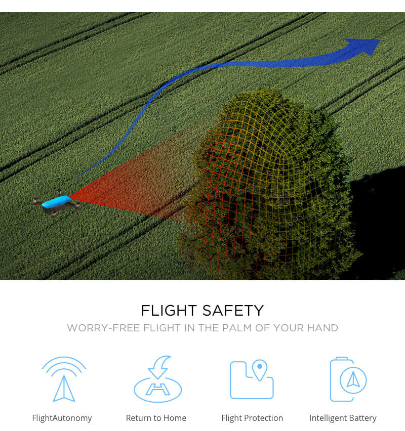 DJI Spark with  Flight Safety