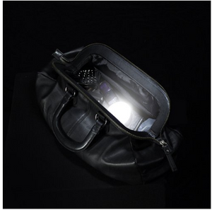 SOI Handbag Light