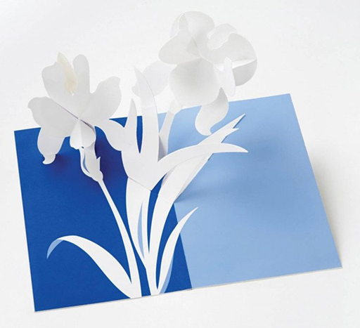 Iris Pop- Up Cards