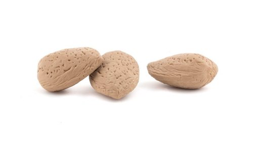 Almond Eraser Set of 3