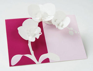 Orchids Pop- Up Cards