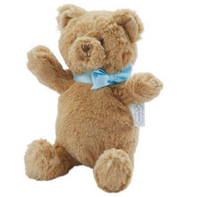 Load image into Gallery viewer, My First Plush Blue Brown Bear