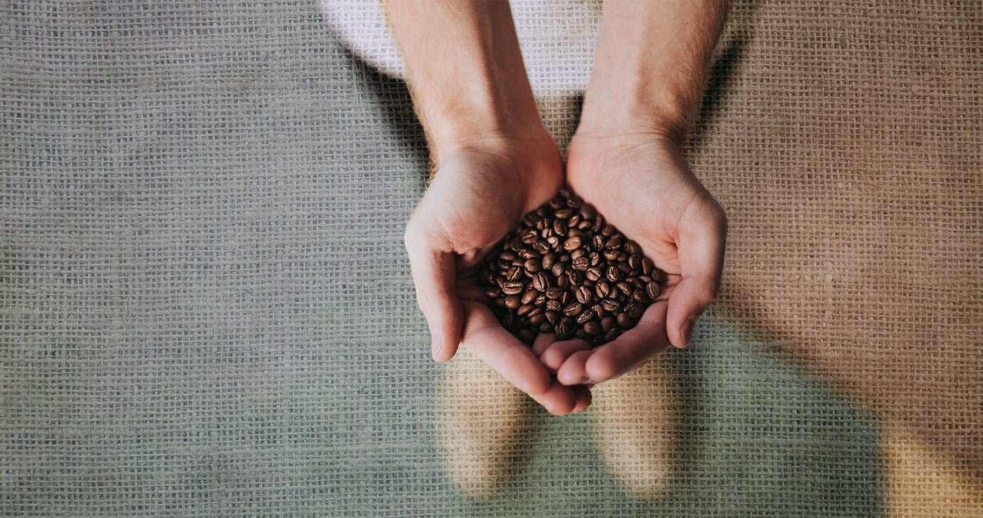 Handful of coffee beans with a burlap pattern background