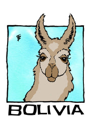Hand-drawn illustration of an alpaca for Bolivia by Mutu Coffee