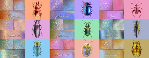 Now Available! Color traveling multichrome shades inspired by colorful insects... INSECTARIUM