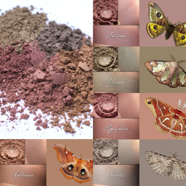Beautiful new multipurpose contour powders, inspired by Moths