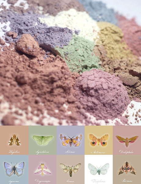 Coming Soon! The Insectarium Multipurpose Lustre Powders inspired by beautiful moths