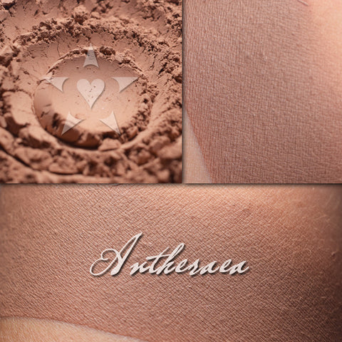 ANTHERAEA-  - Multipurpose Contour/Eyeshadow